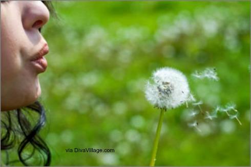 dandelion_blowing-2